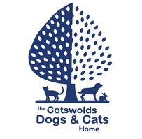 "Mrs R (FAIRFORD) supporting <a href=""support/the-cotswolds-dogs-and-cats-home"">The Cotswolds Dogs & Cats Home</a> matched 2 numbers and won 3 extra tickets"