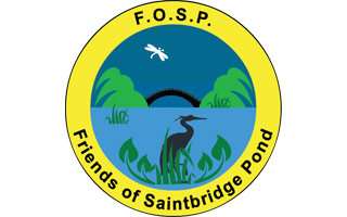 Friends of Saintbridge Pond