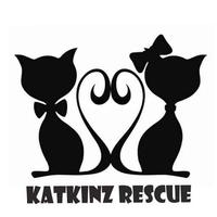 "Mr L (GLOUCESTER) supporting <a href=""support/katkinz-rescue"">Katkinz Rescue</a> matched 2 numbers and won 3 extra tickets"